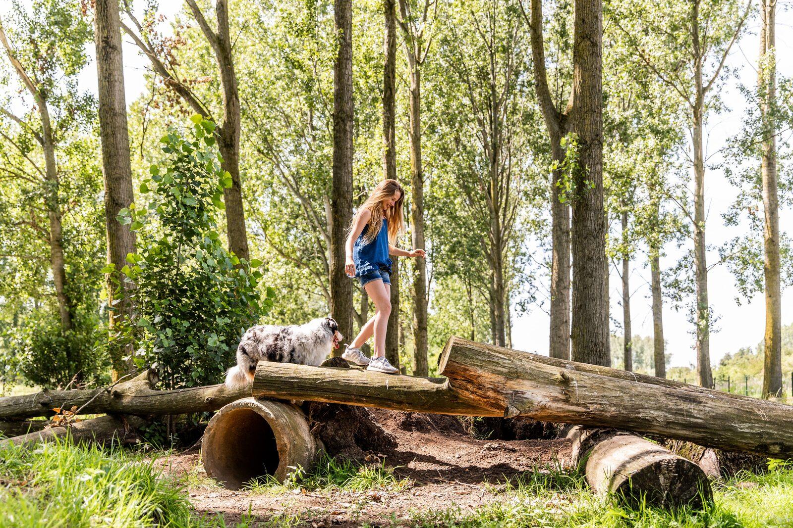 vakantie met hond nederland