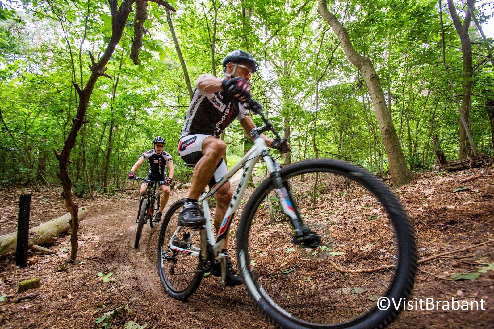 Mountainbiken tijdens je vakantie in Brabant