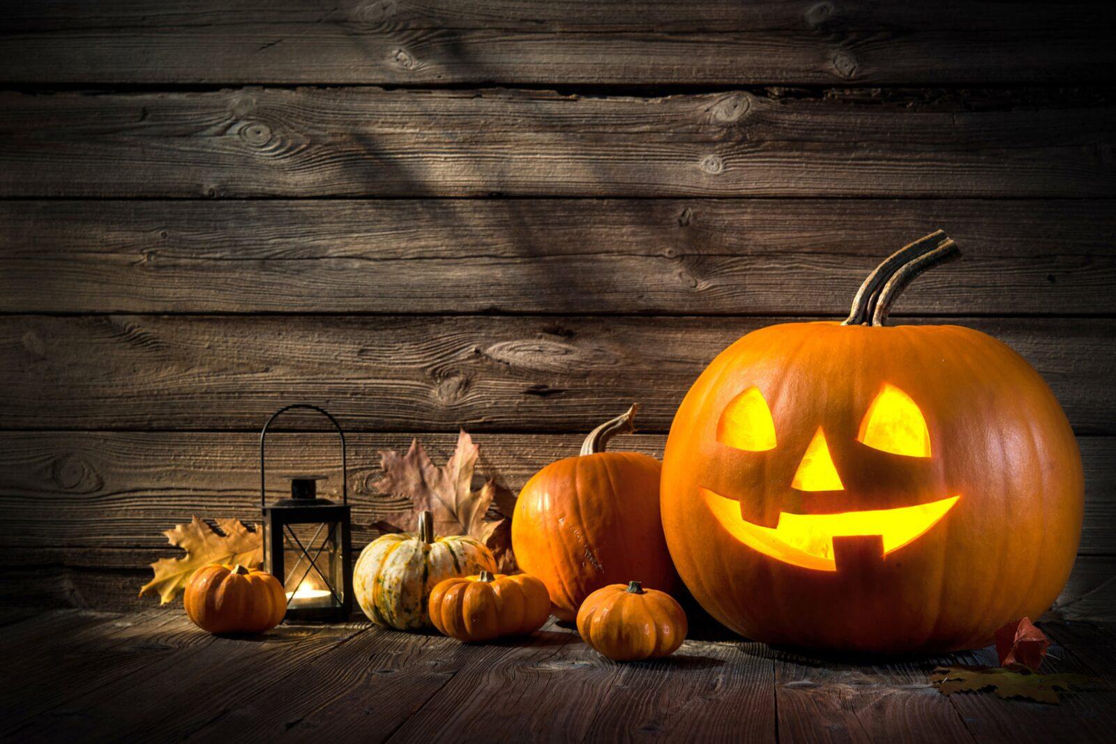 Halloween au ferme pédagogique