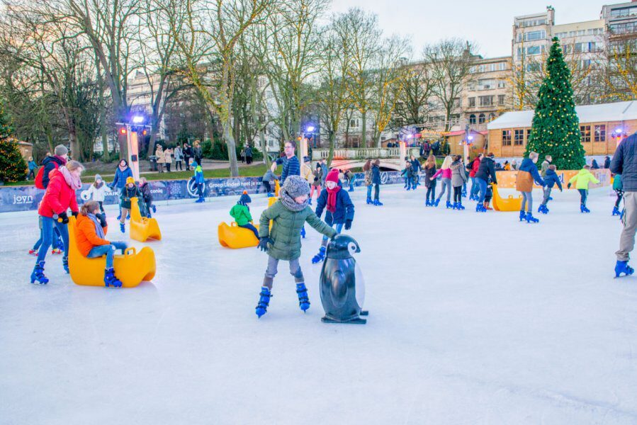 Winter in het park