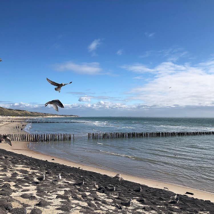 Vakantie Zeeland aan zee