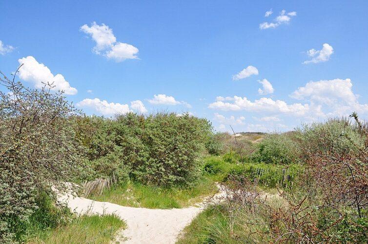 Circuit de la Dune Marchand