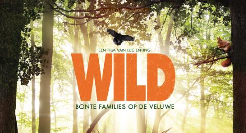Wild spotten | Park Berkenrhode
