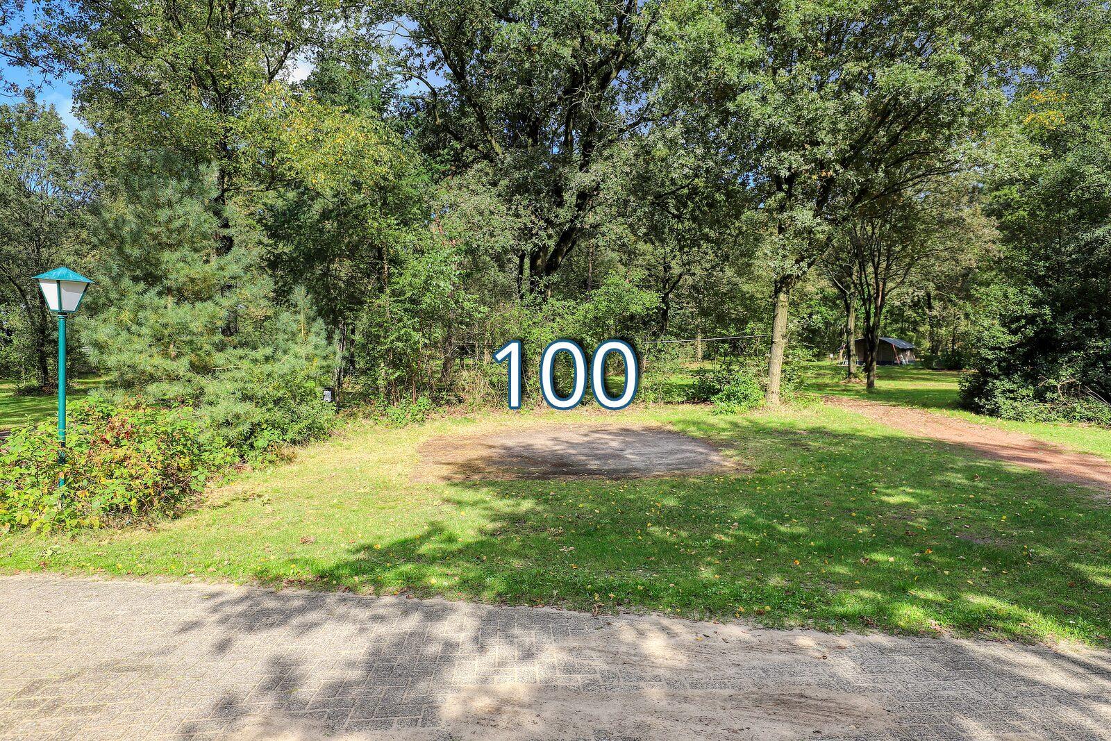 boshoek 100