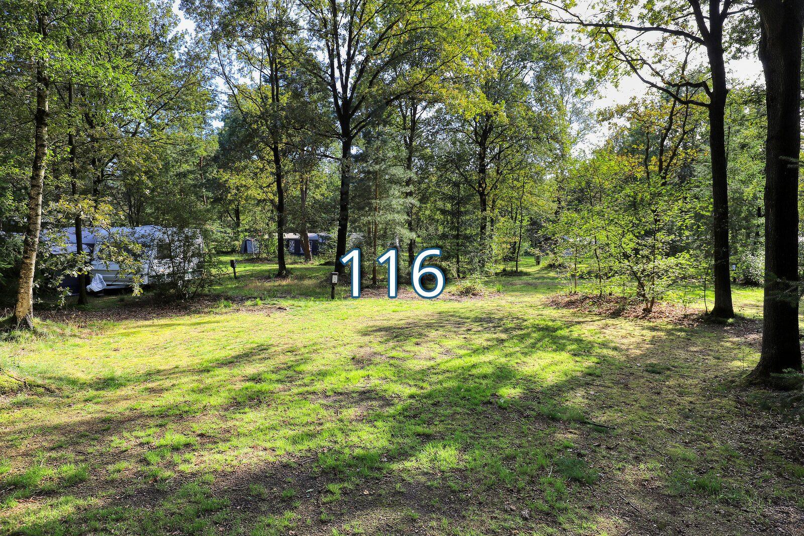 boshoek 116
