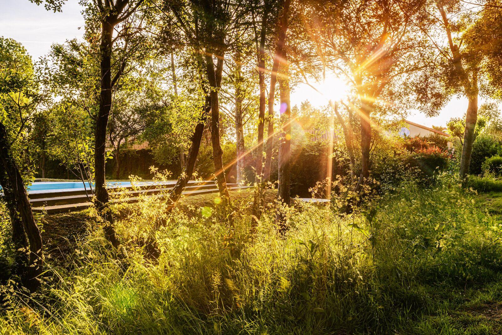 Herfst Oasis Les Jardins