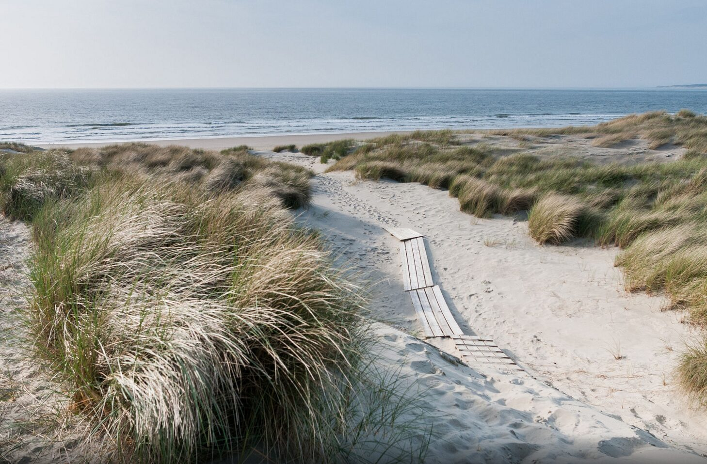 Luxus-Ferienhäuser am Meer in Zeeland
