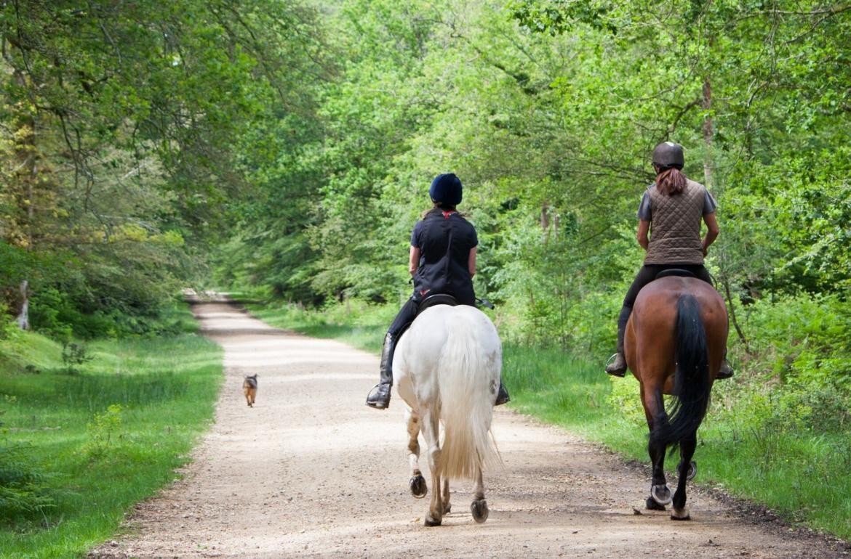 Paardrijden in de Vendée
