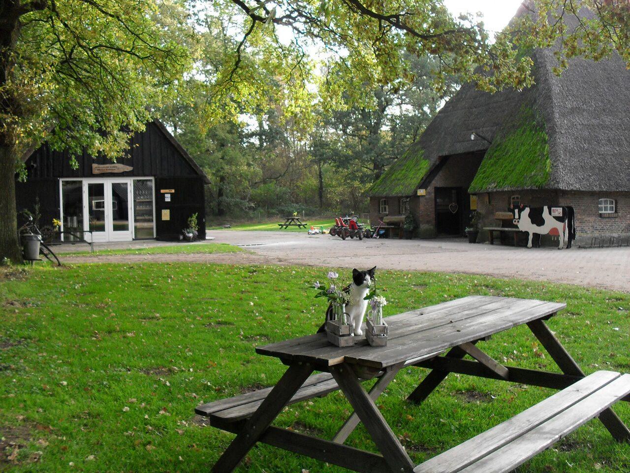 Meulenhorst-Bauernhof