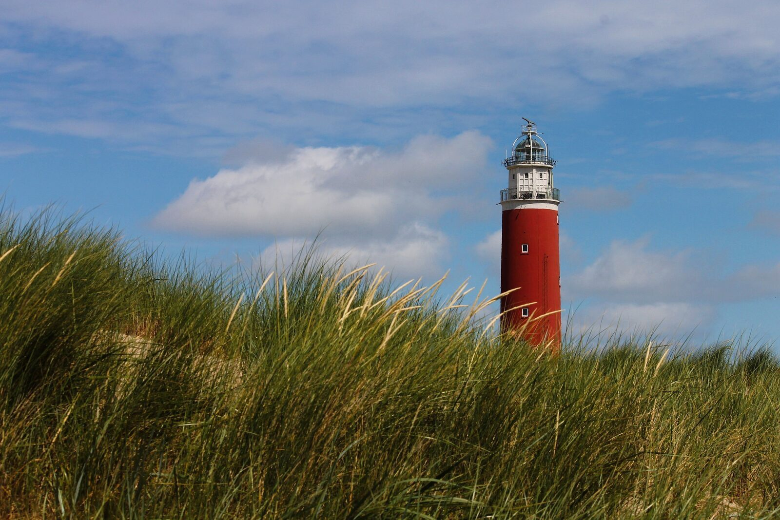 Black friday Texel