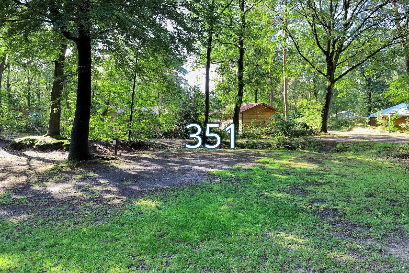 houtduif 351