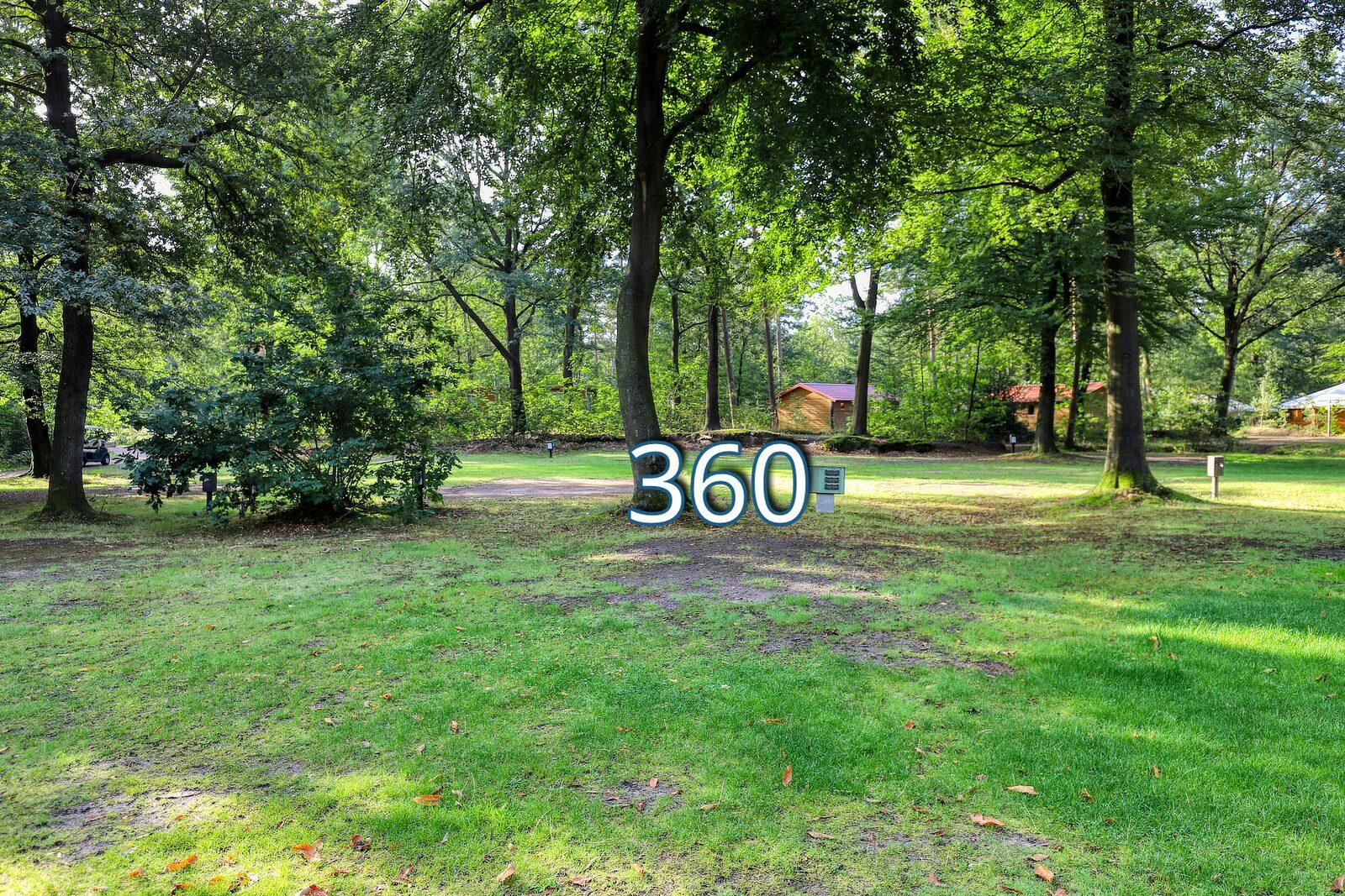 houtduif 360