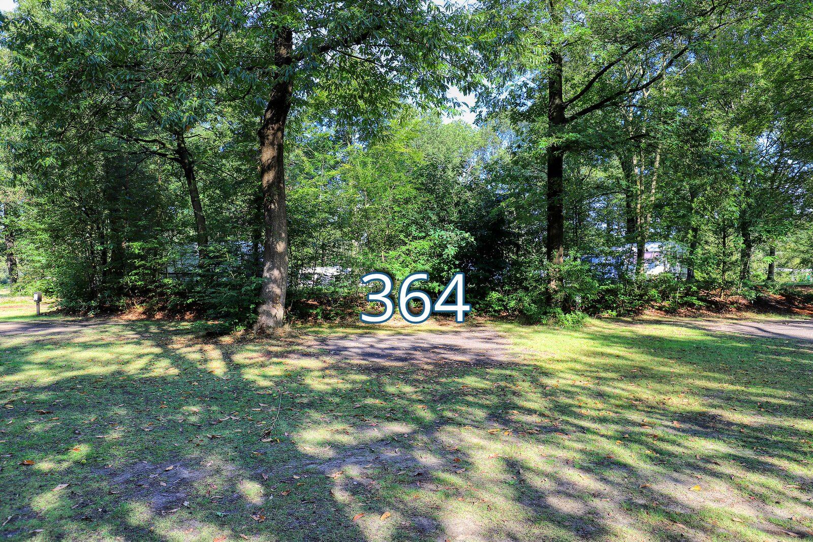 houtduif 364