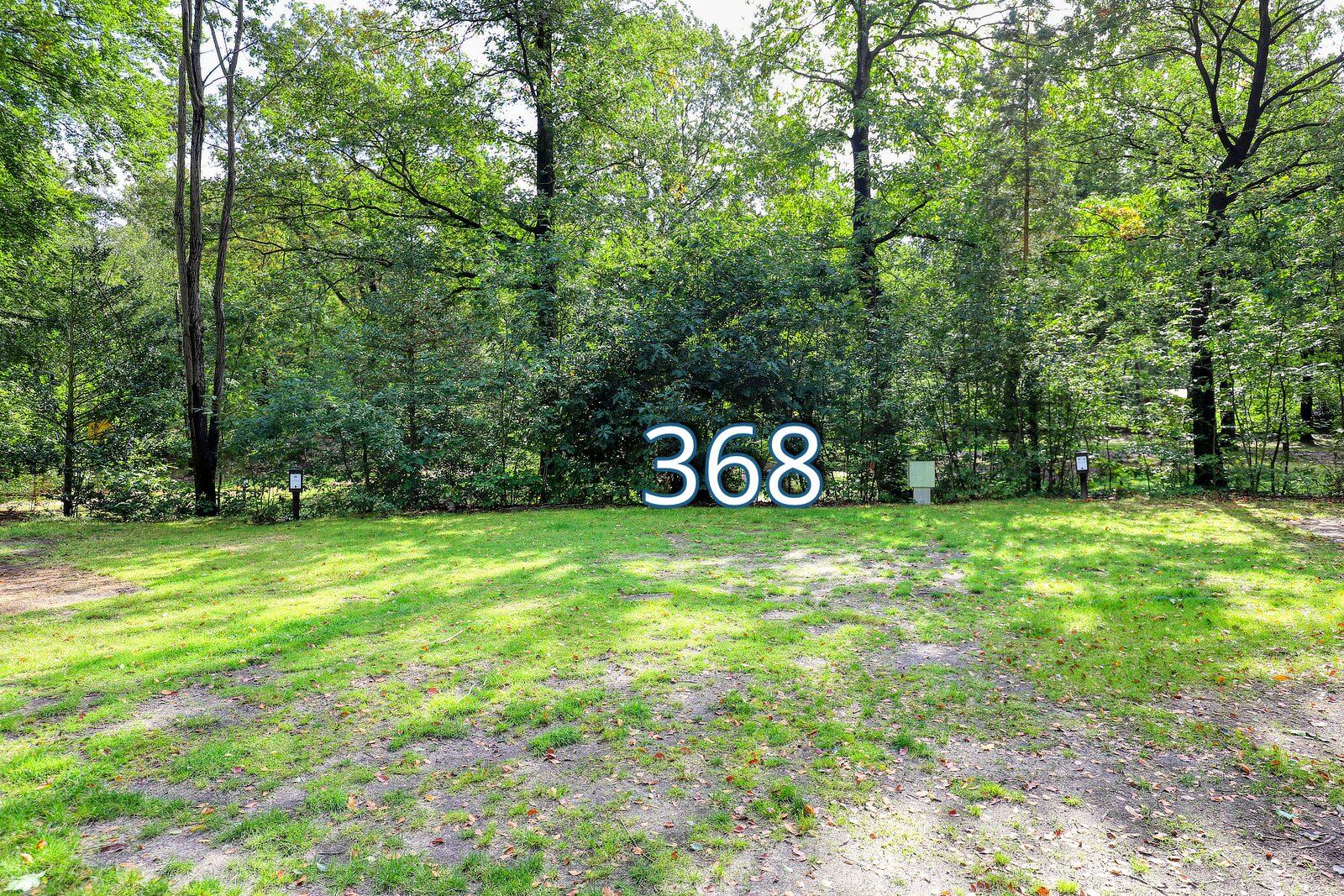 houtduif 368