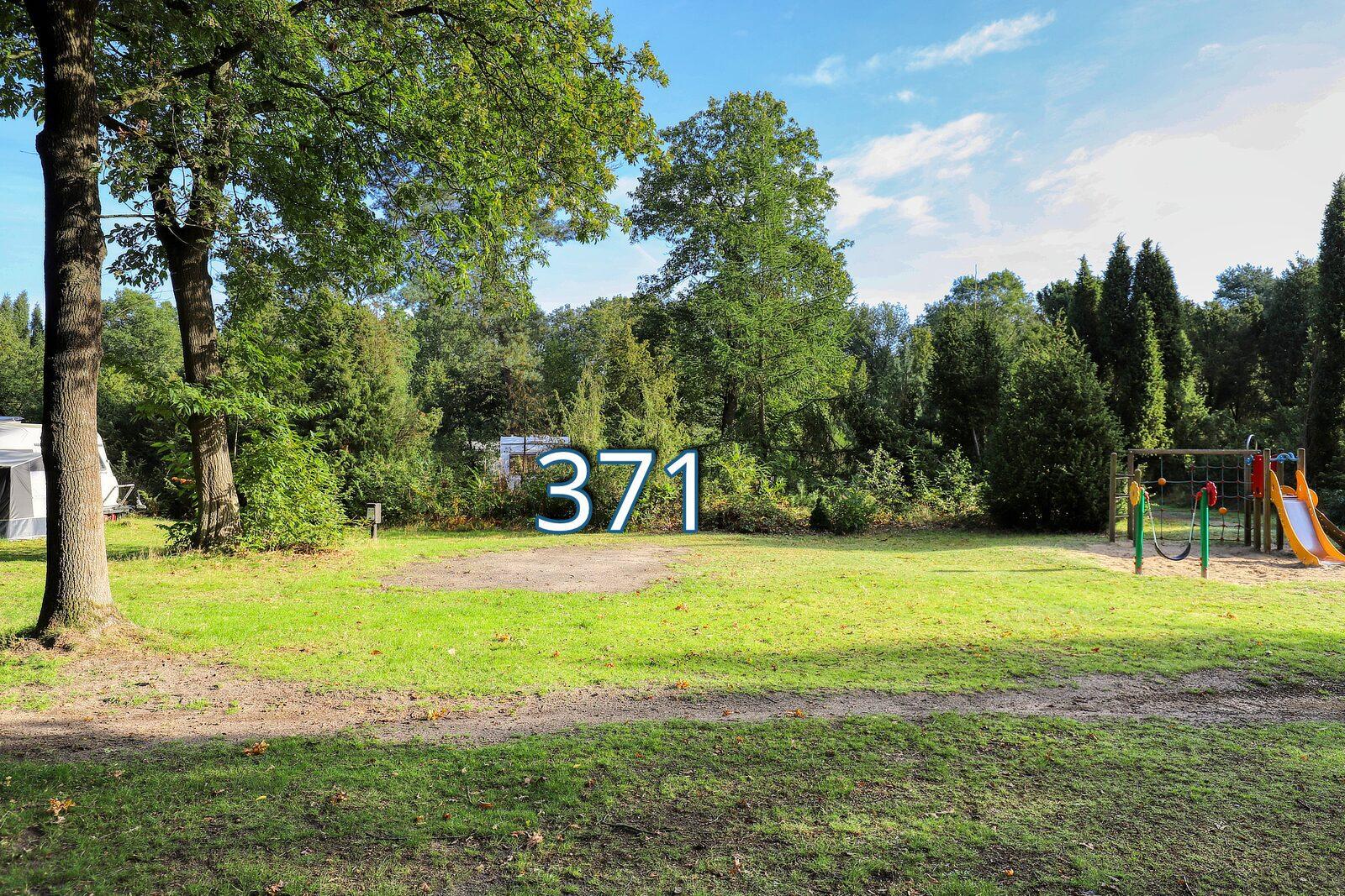 houtduif 371