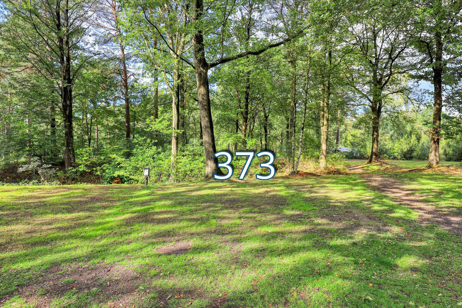 houtduif 373