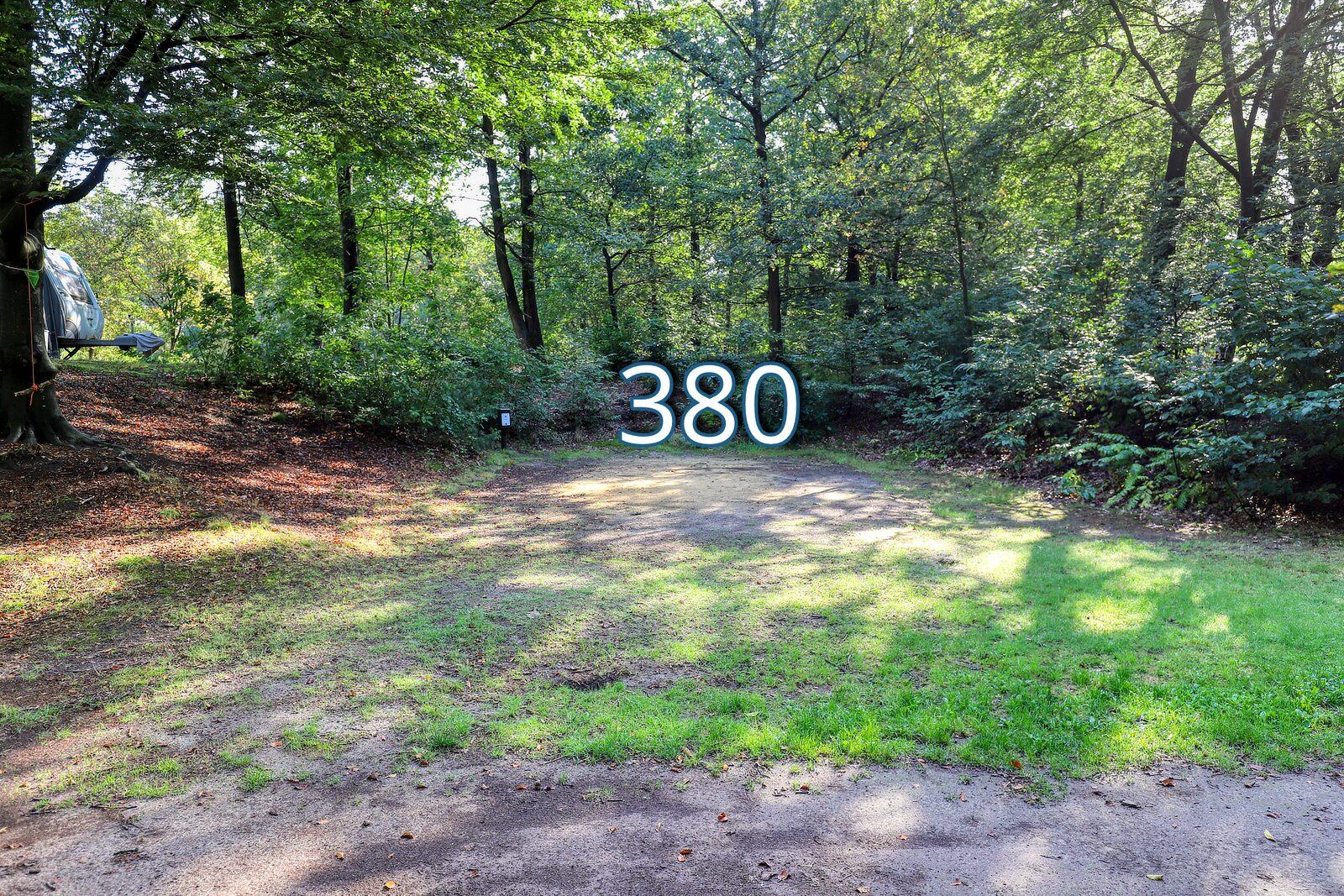 houtduif 380