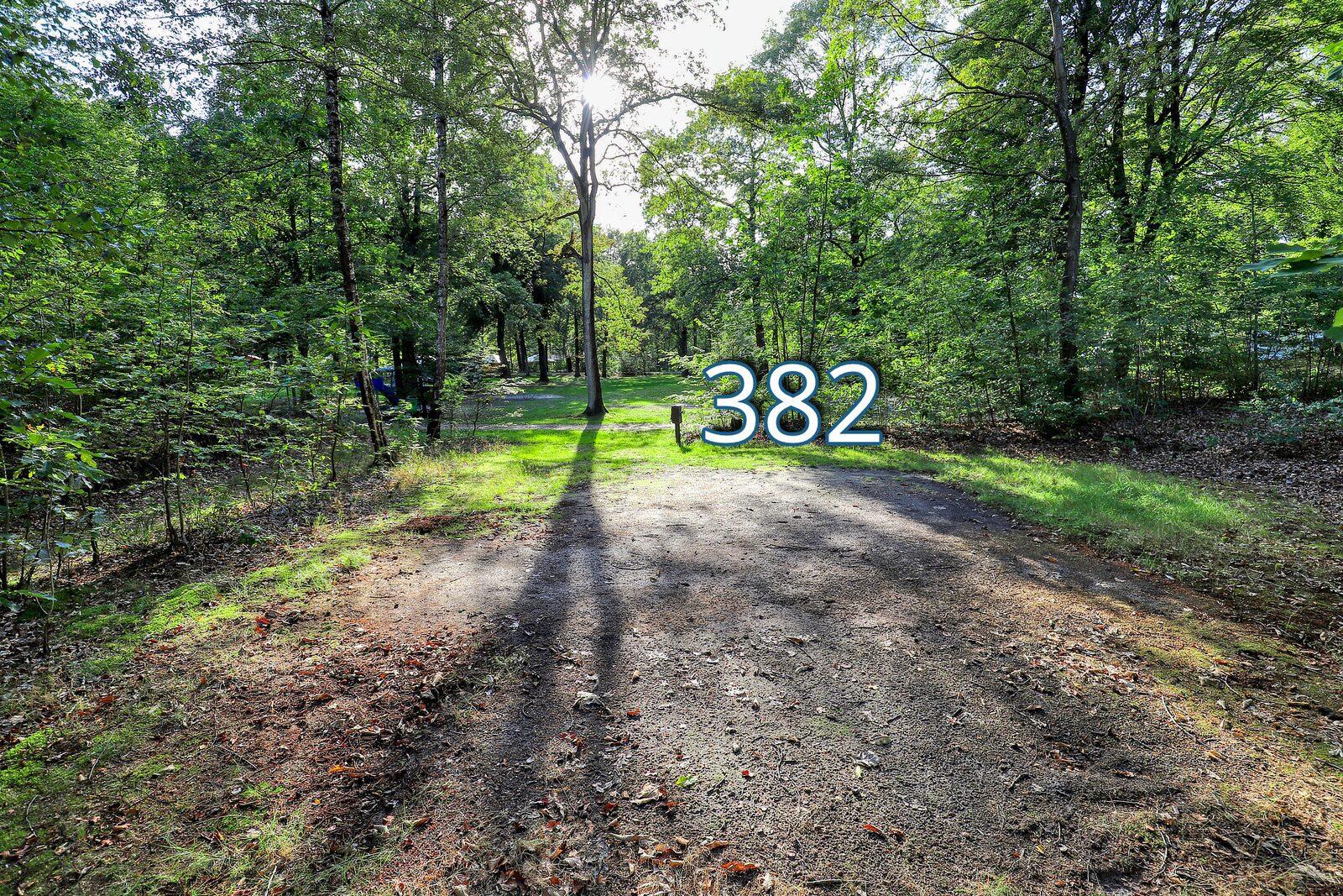 houtduif 382