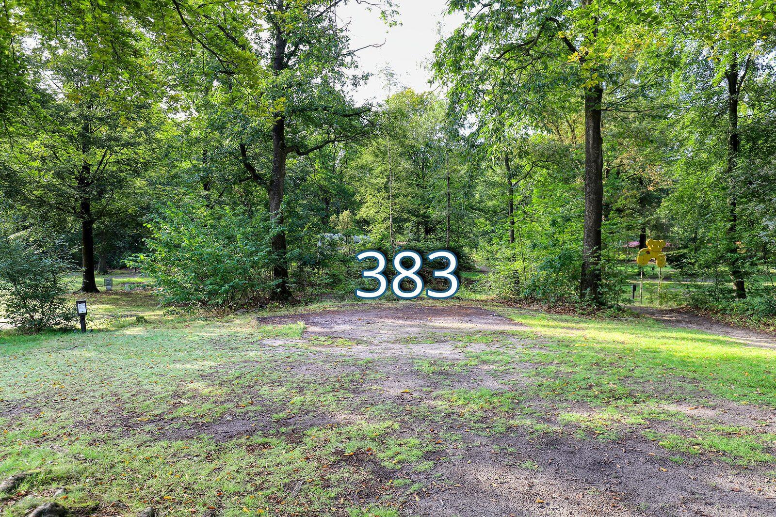 houtduif 383