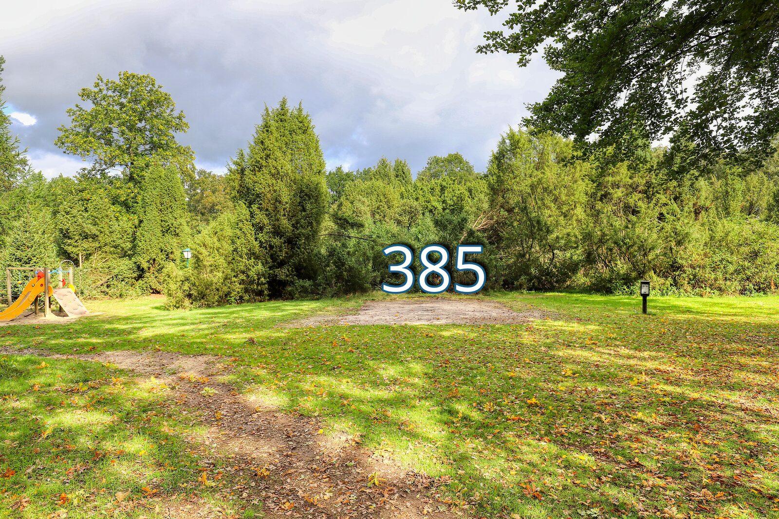 houtduif 385