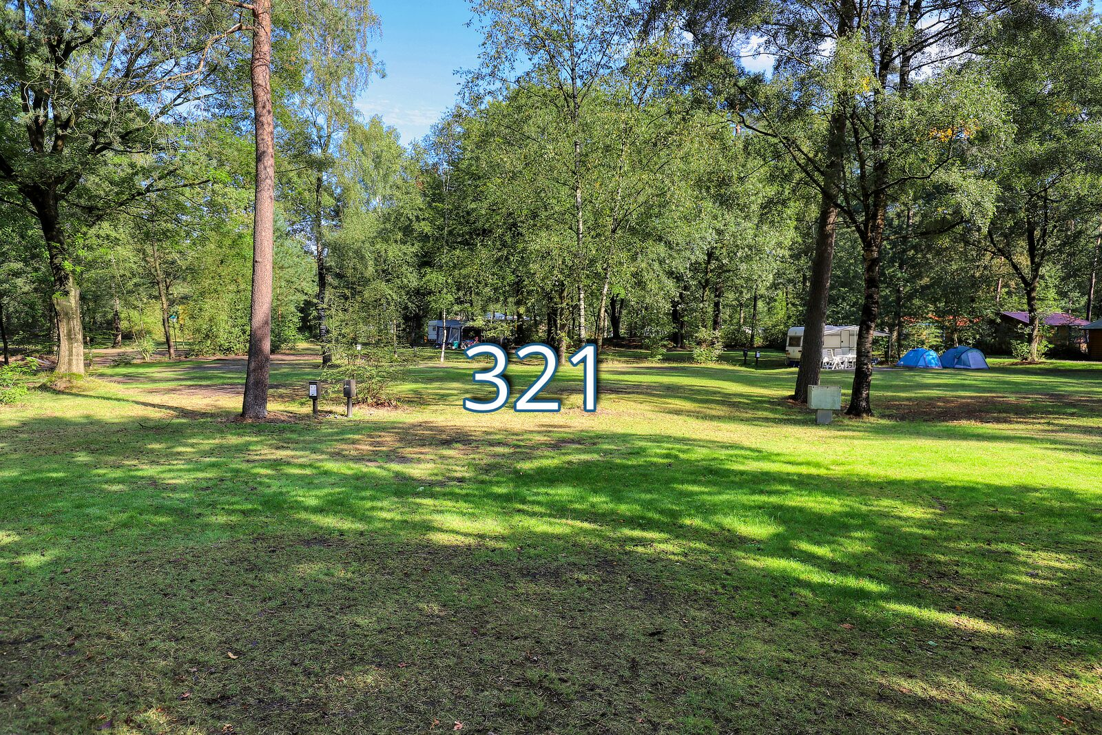 kwikstaart 321