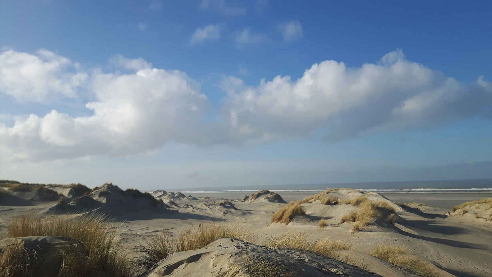 Stranden | Résidence Terschelling