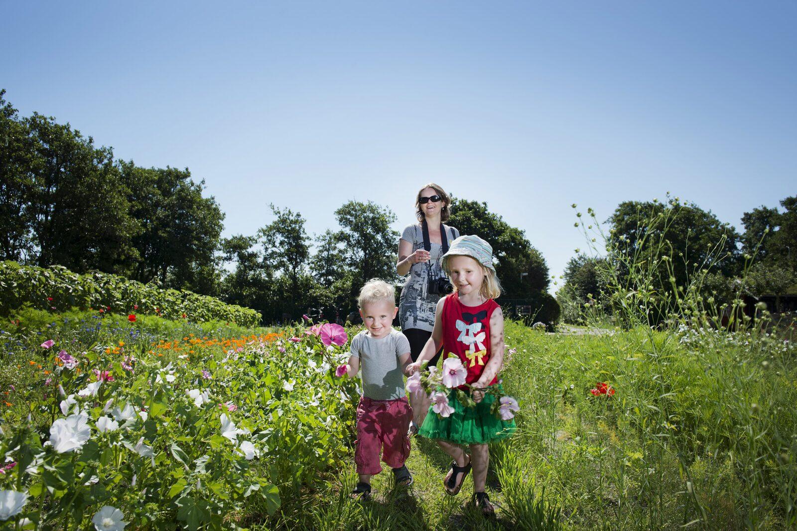 Met de kinderen naar Terschelling | Résidence Terschelling