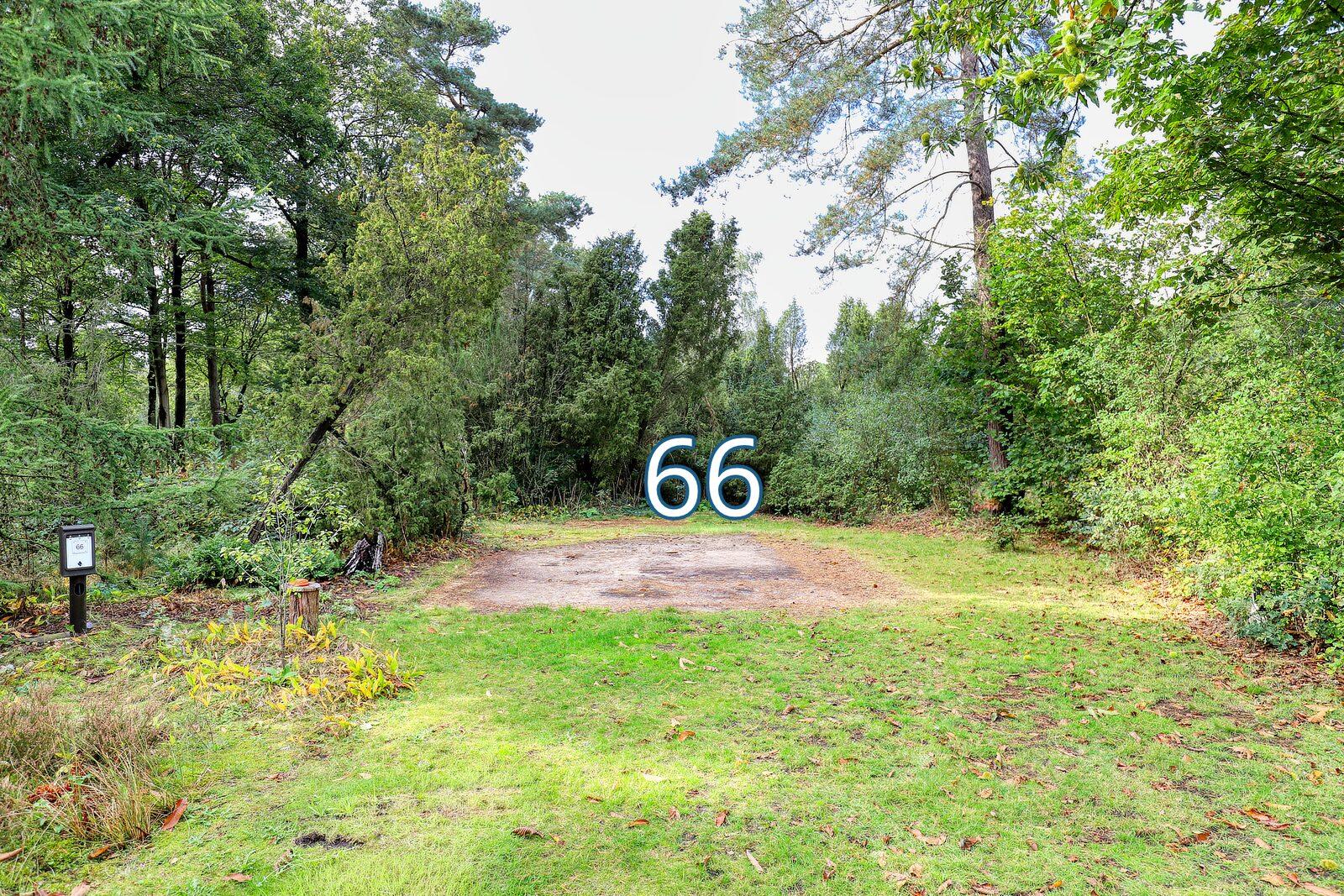bessenhoek 66