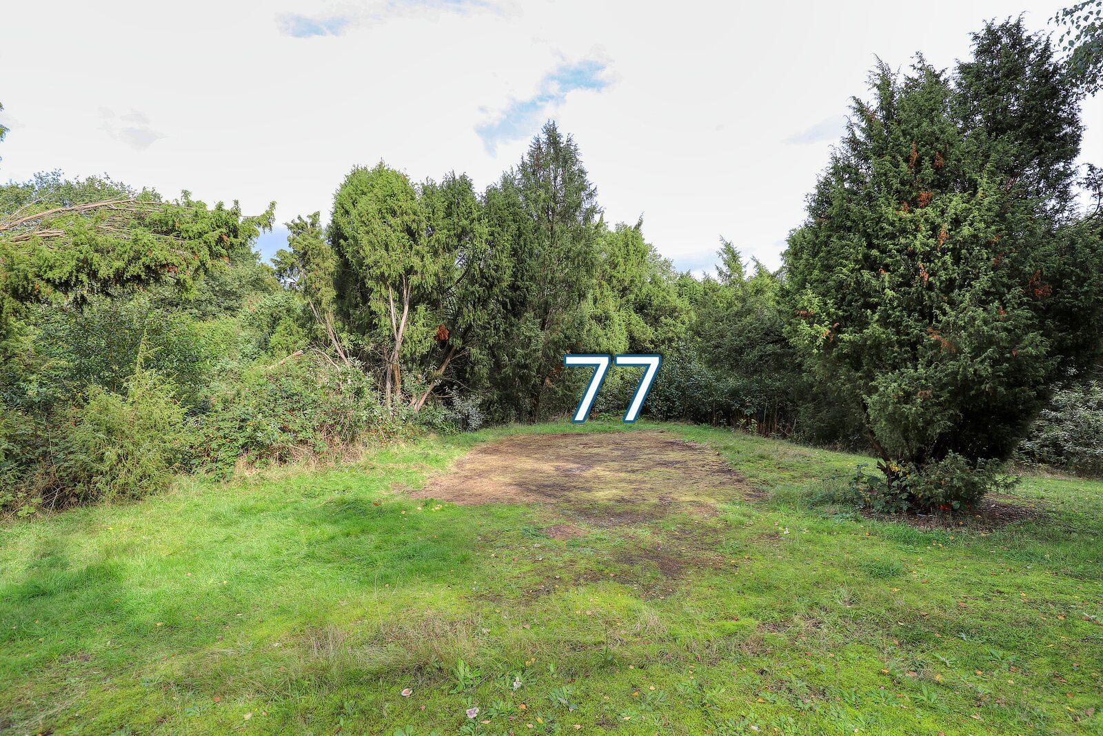 bessenhoek 77