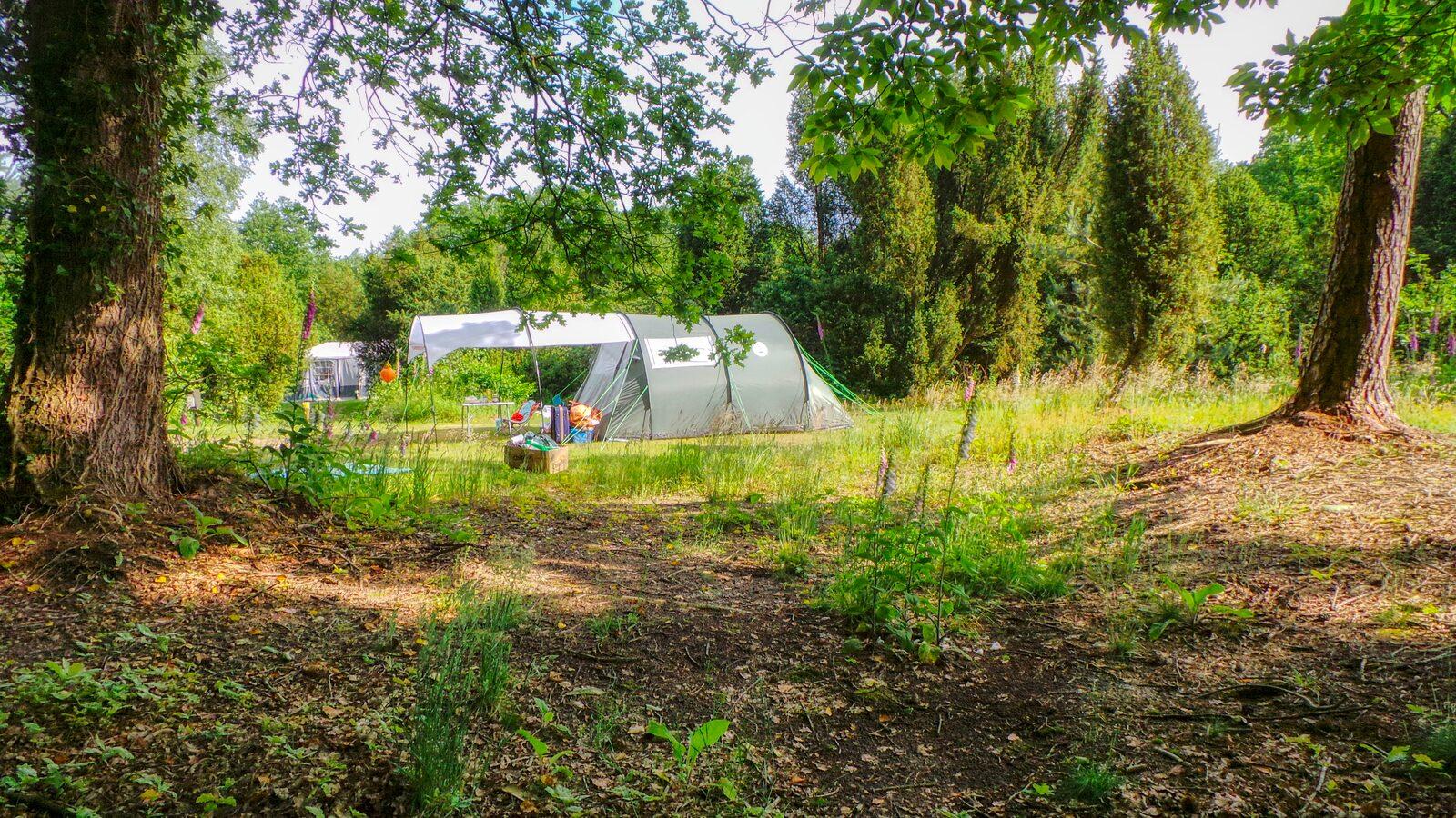 bessenhoek 75 tent