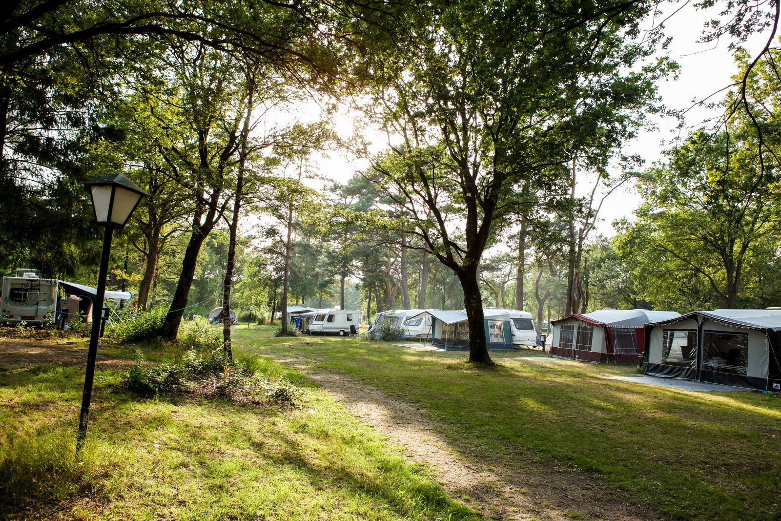 roege stuk kampeerplekken