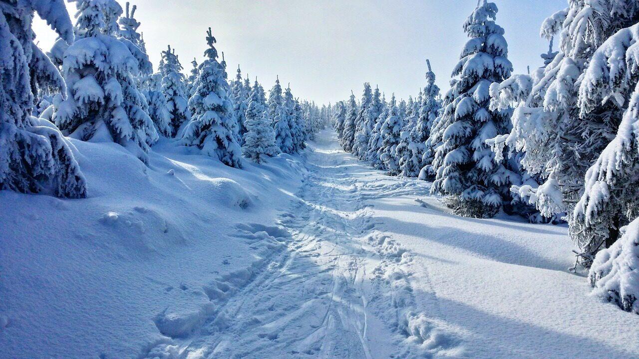 Besneeuwde bergen in Les Portes du Soleil