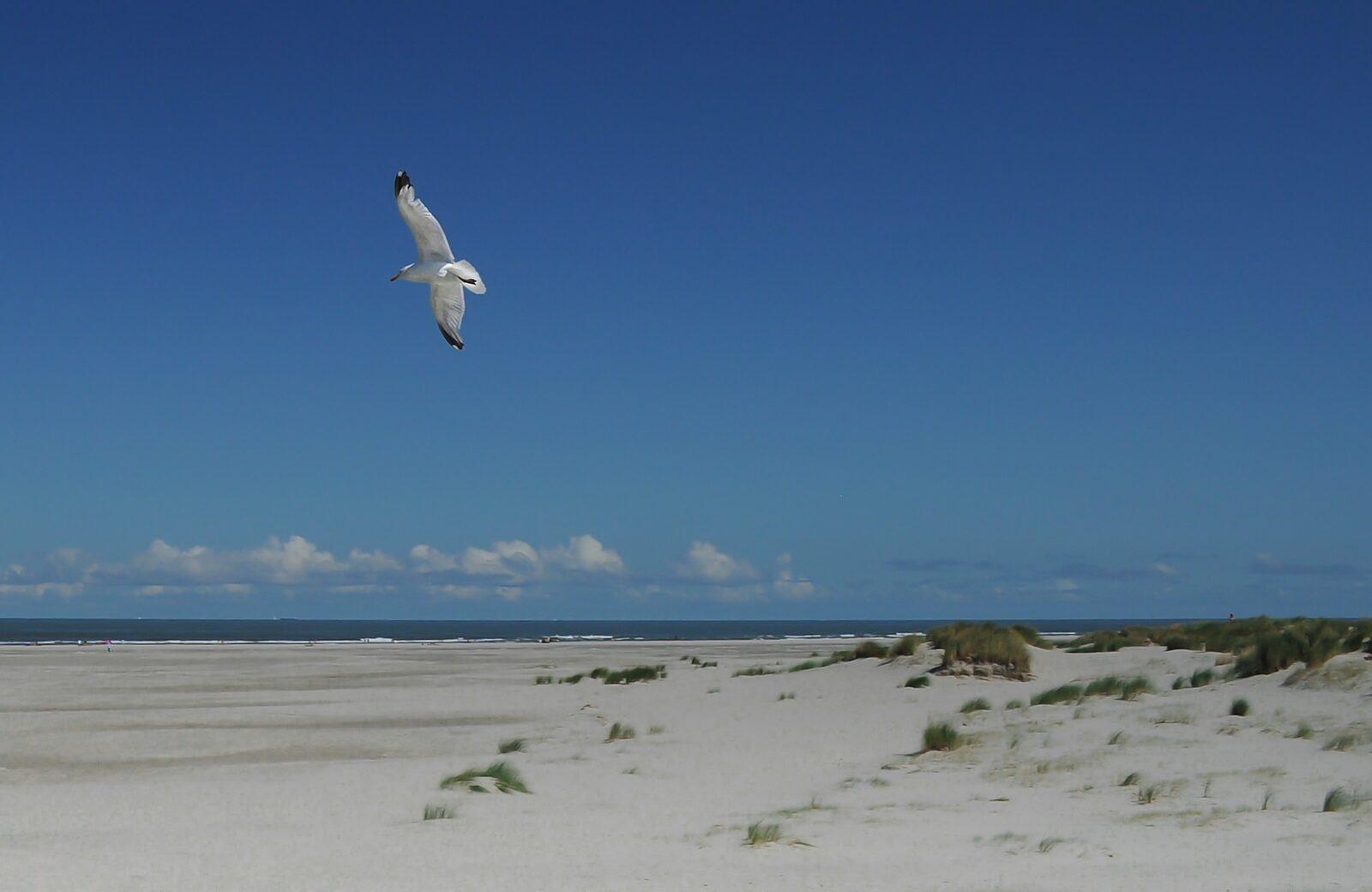vakantie zeeland