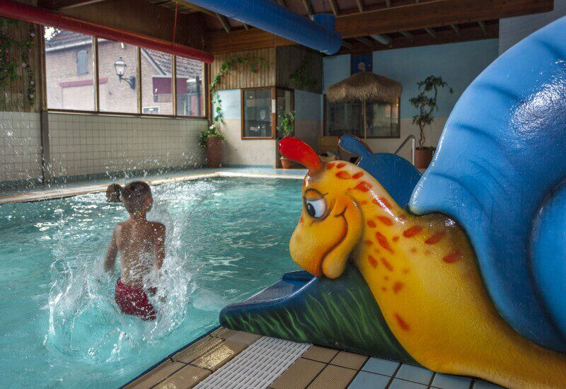 Holiday resort in Overijssel with an indoor pool