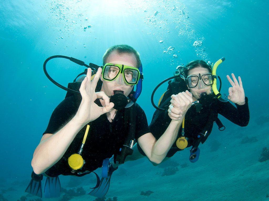 Oosterschelde Diving
