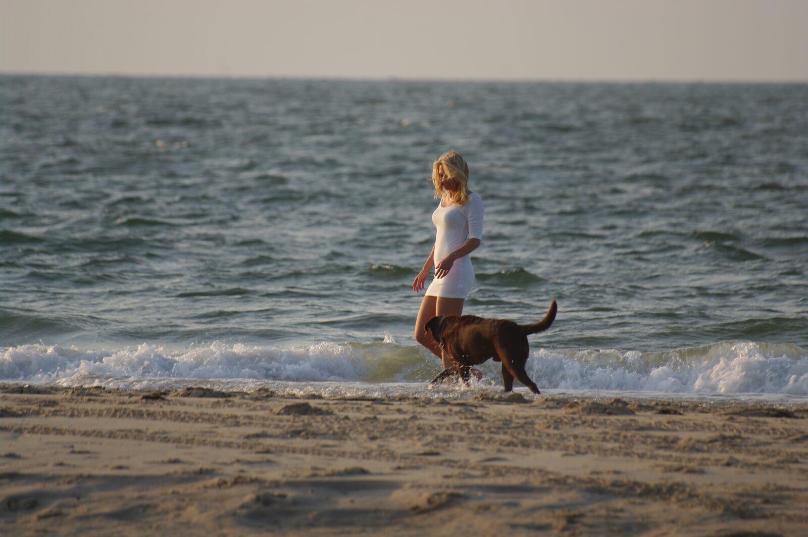 Nordsee Urlaub mit Hund