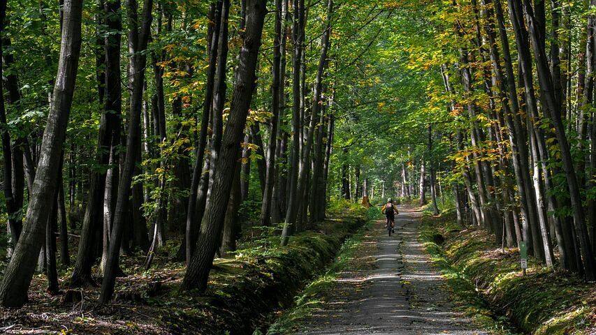 Blauwe route Holten (25 km)