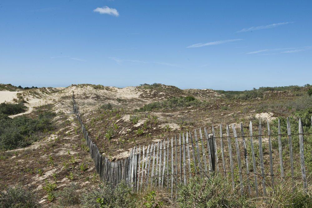 Wat te doen in Bray-Dunes - Etoile de Mer