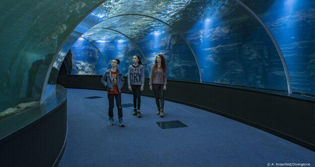 Aquarium de Nausicaa à Boulogne sur Mer sur la Côte d'Opale