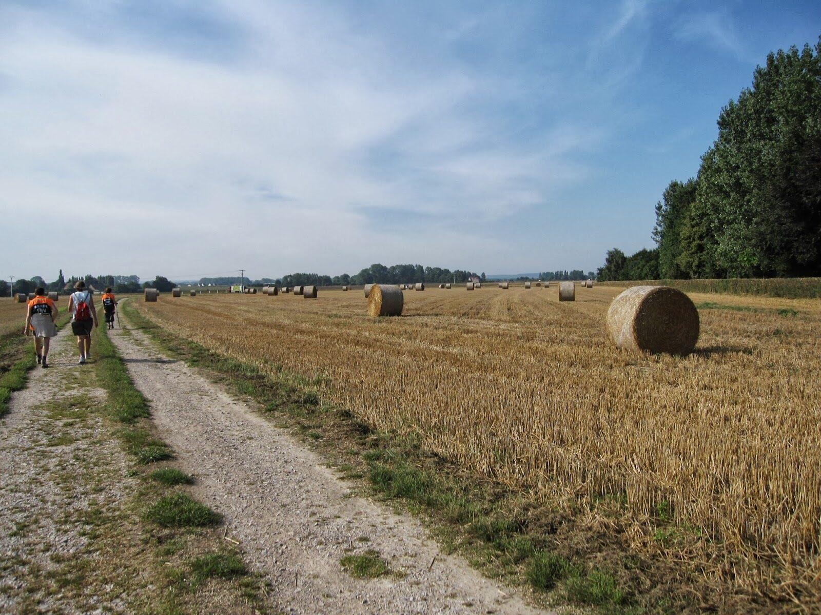 Le sentier d'Audruicq