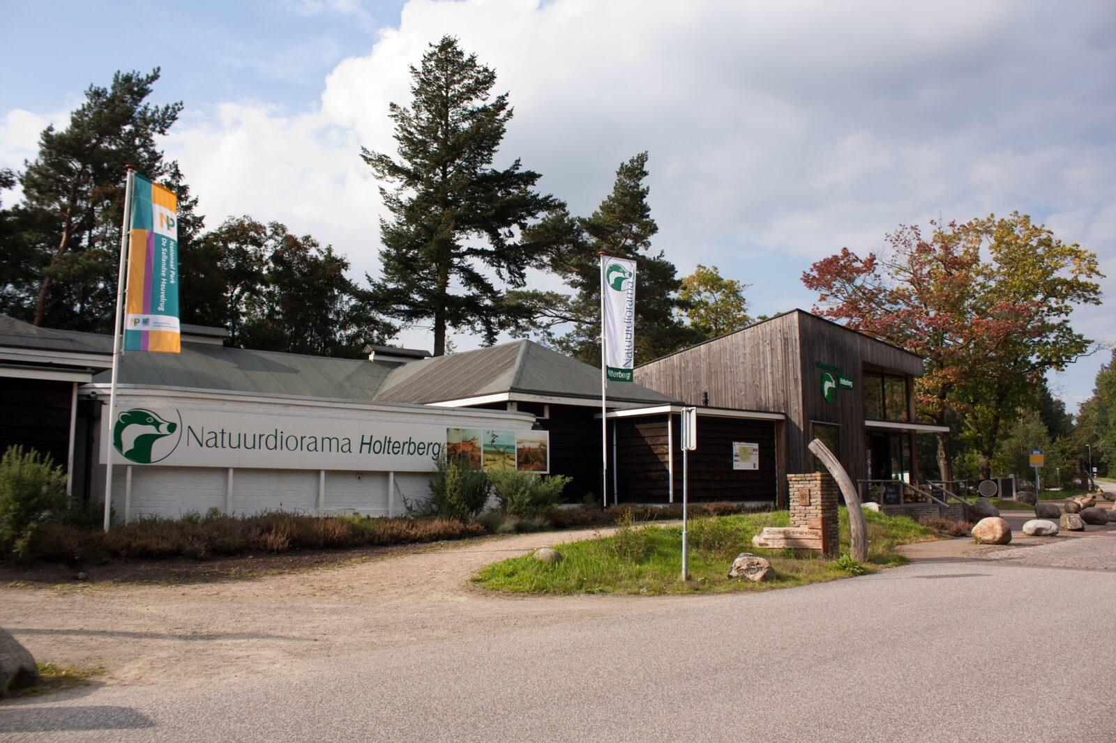 Natuurdiorama Holterberg