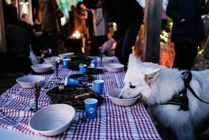 Tubantia: «Les chiens et leurs propriétaires se rendent au parc de vacances Lichtenvoorde afin de fuir les feux d'artifice».
