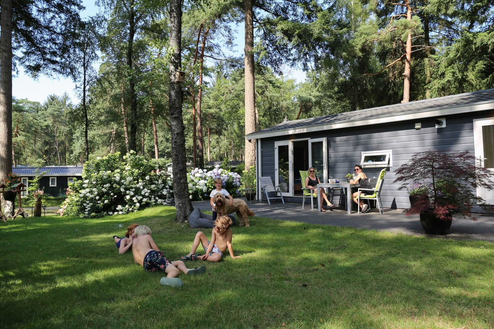 Affordable holiday park The Netherlands