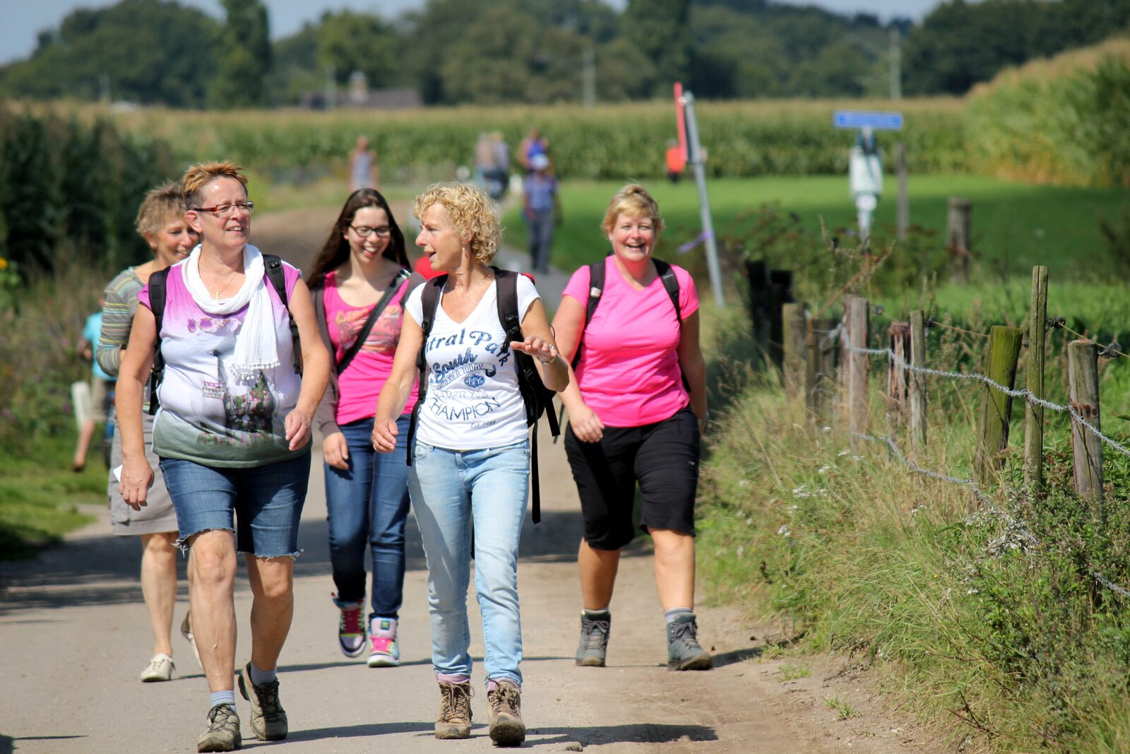 Hiking 4-Day Alkmaar