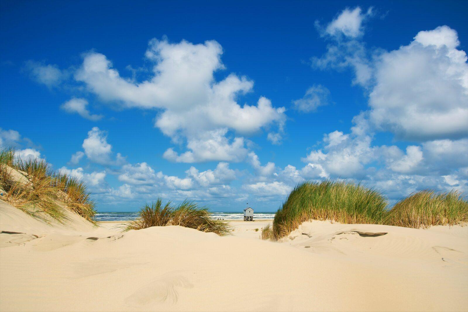 Wilt u het ware eilandgevoel ervaren? Kom naar Terschelling!